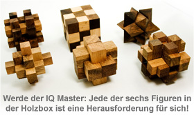 IQ MASTER - Games in Holzbox - 2