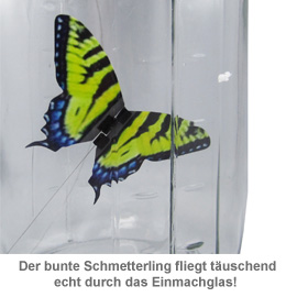 My Butterfly - Schmetterling im Glas - 2