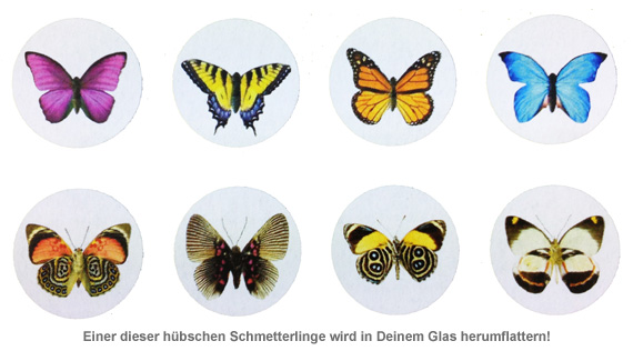 My Butterfly - Schmetterling im Glas - 4
